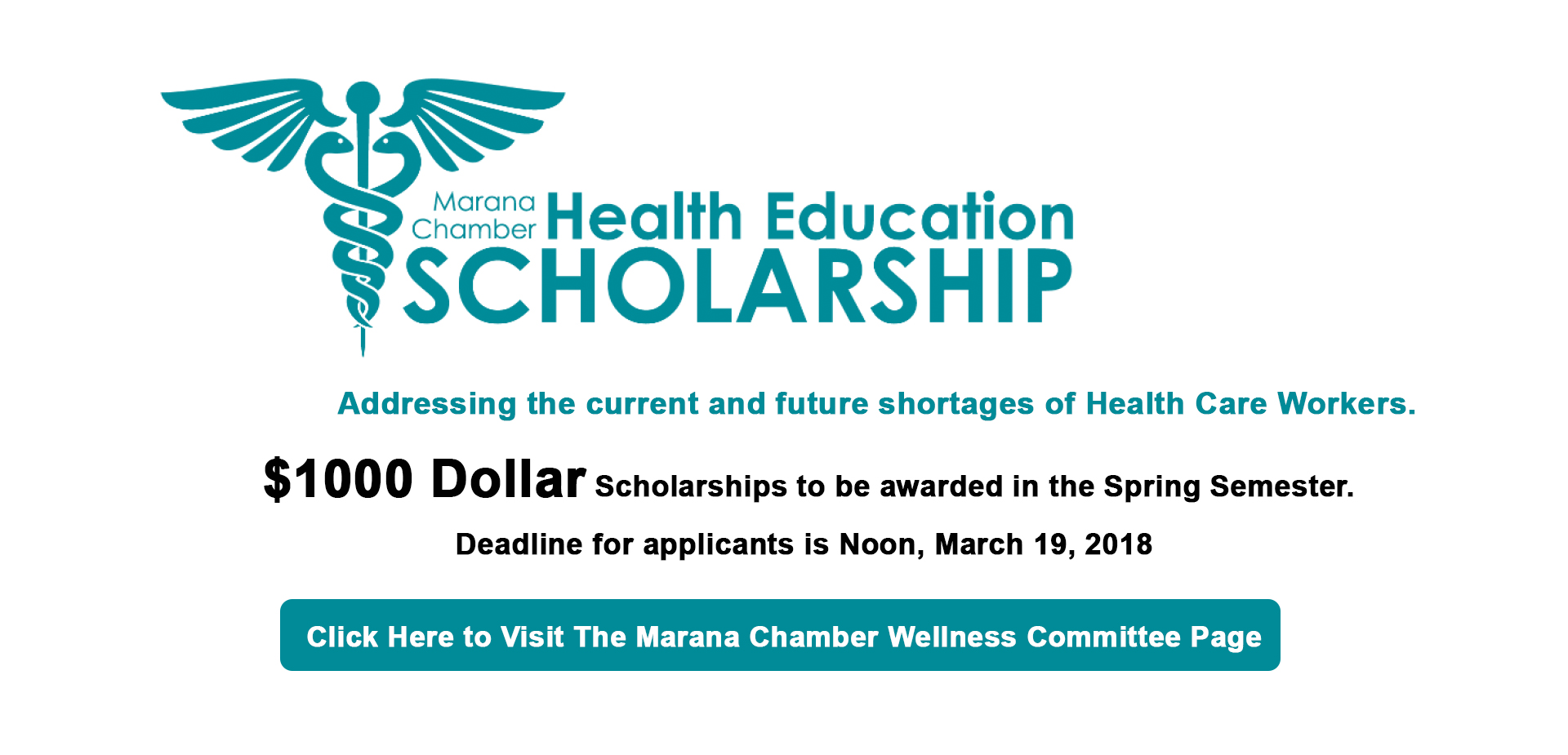 Wellness Scholarship